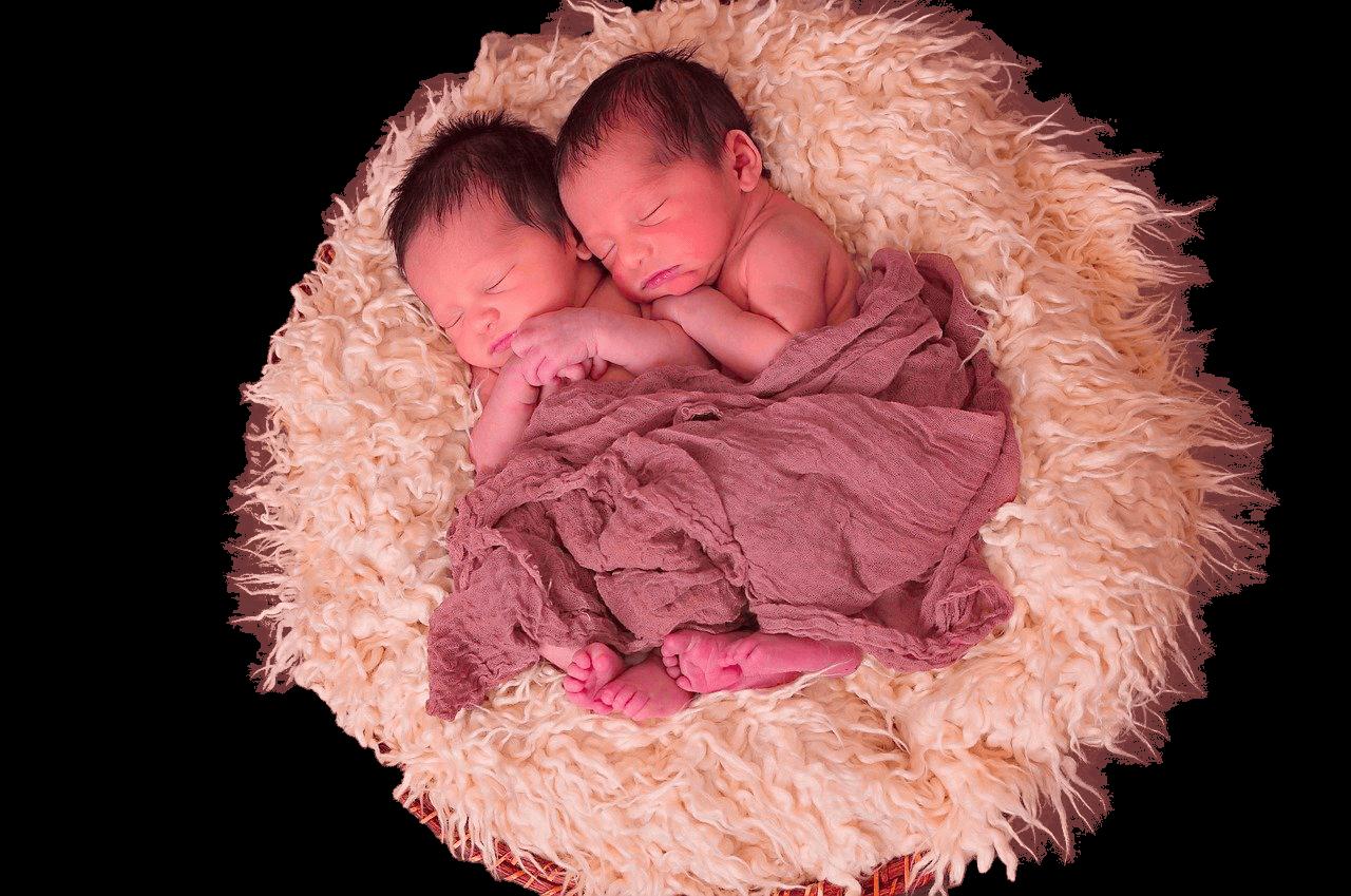 Gemelos – twins
