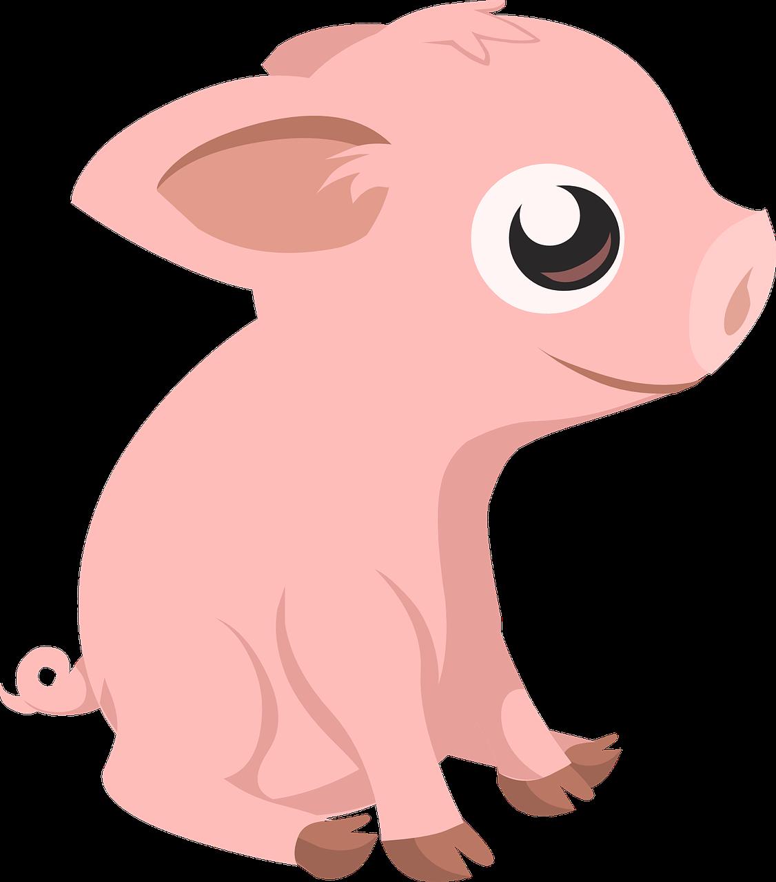 Cerdito lechón