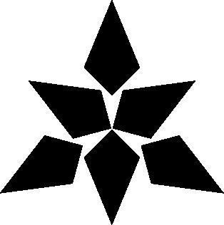 Estrella nueve puntas