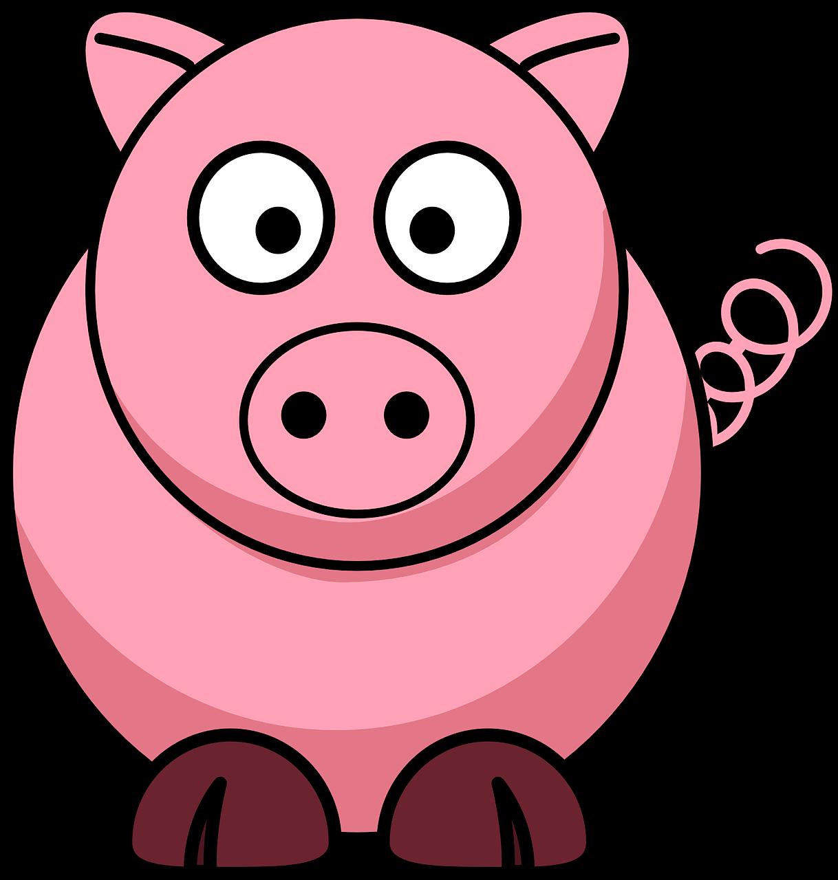 Cerdo resorte