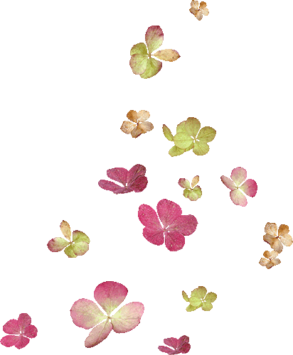 Flores rosas y amarillas