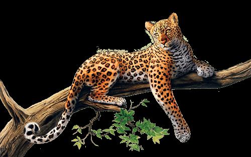 Jaguar en árbol