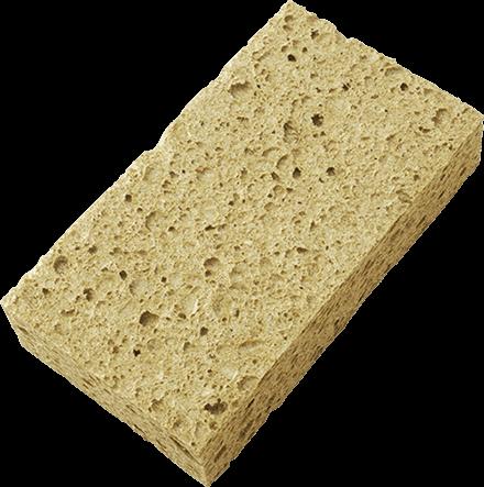 Esponja vieja