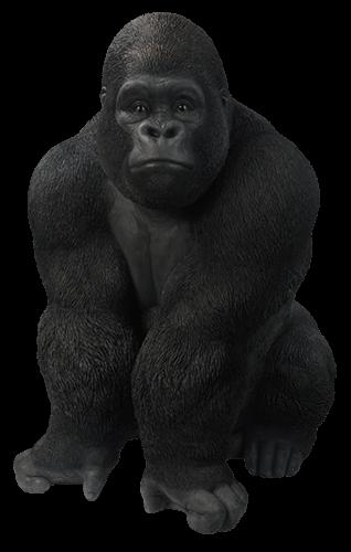 Gorila mirando