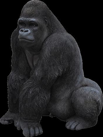 Gorila viendo al lado