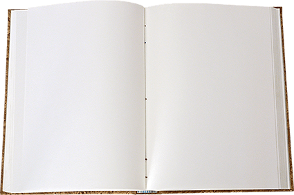 Hojas blancas en libro