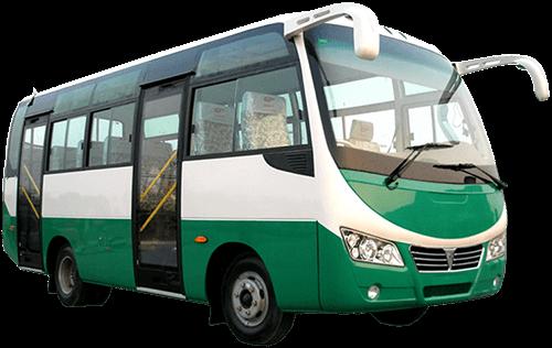Microbuseta verde