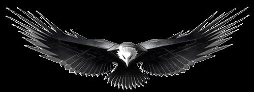 Águila Eagle vuela frente a ti
